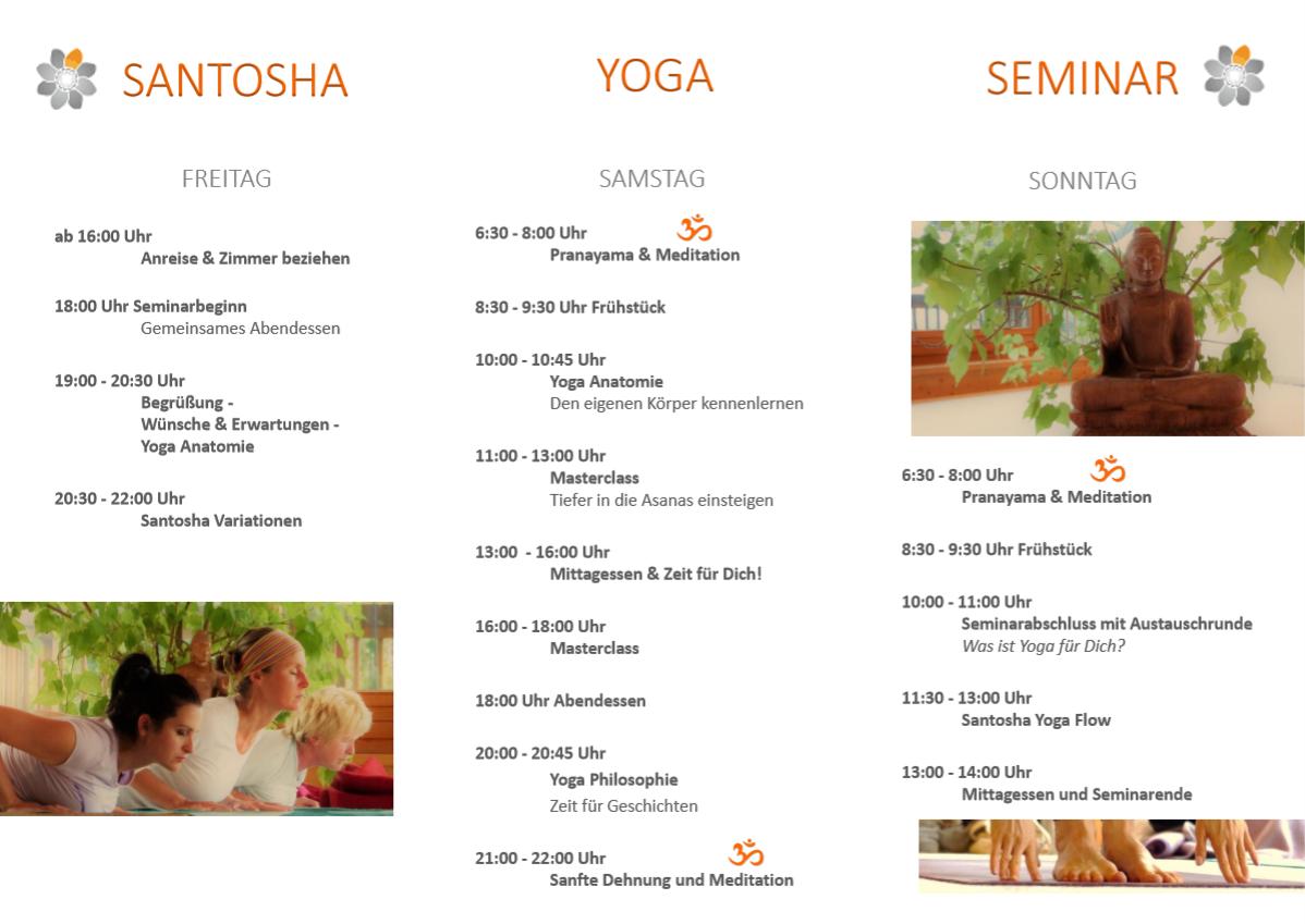 Yoga Seminar 2